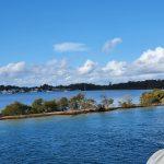 Swan Bay, Lake Macquarie