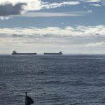 Glovis Ambition leaving and Shinryo Maru entering port