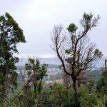 View from Gan Gan Lookout