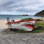 Fishing Boat (!) at Boat Beach