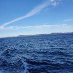 Around Cape Hawke
