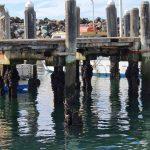 Old berths in state of disrepair
