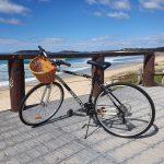 3.5km ride to Park Beach