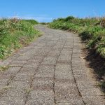 Path to top of Muttonbird Island