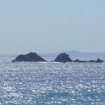 Julian Rocks, the area surrounding has been established as a marine reserve.