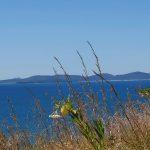 View across to Great Keppel (Wop-pa) Island