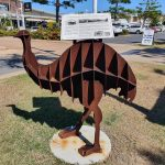 One of the many emus in Emu Park