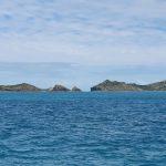 Treble Reef