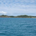 Curlew Island