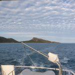 Farewell Curlew Island