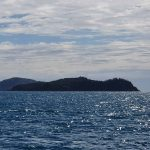 Silversmith Island, based on its name we thought it would be part of the Ingot Islands group