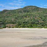 Shaw Island beach