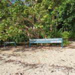 Sawmill Beach