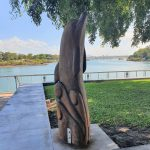 Tallowood carving of a dolphin by Shane Christensen