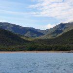 Shark Bay, leaving Cape Upstart