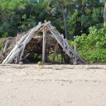 Someone was busy making a hut