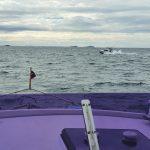 Boat traffic!