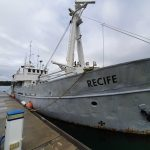 Recife - at marina - in need of work