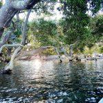 12 July I went kayaking near Dowadee Island