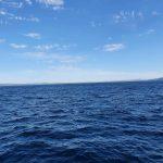 Coastline (without using zoom)
