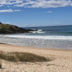 Part of Macauleys Headland Walking Track - for another day
