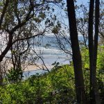 View to where Boambee Creek meets the sea