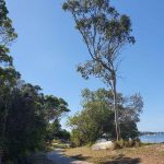 Path along Iluka Foreshore