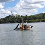 Trawling for prawns