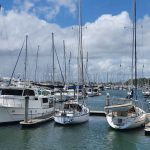 Sea of masts