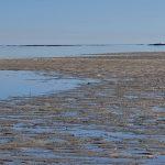 Low tide when we went ashore