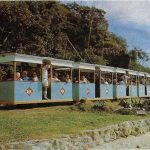 Image of the train, circa 1966, at Brampton Island