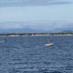Leaving Queen's Bay